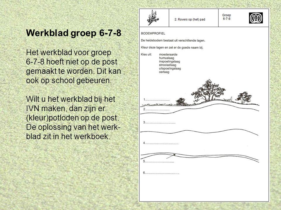 Werkblad groep 6-7-8