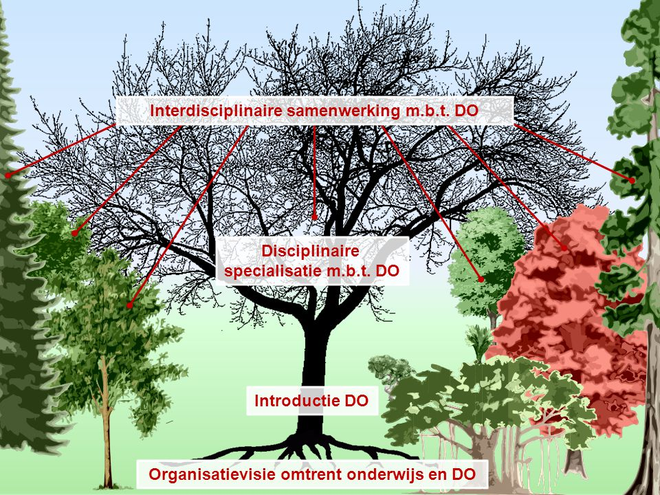 Interdisciplinaire samenwerking m.b.t. DO