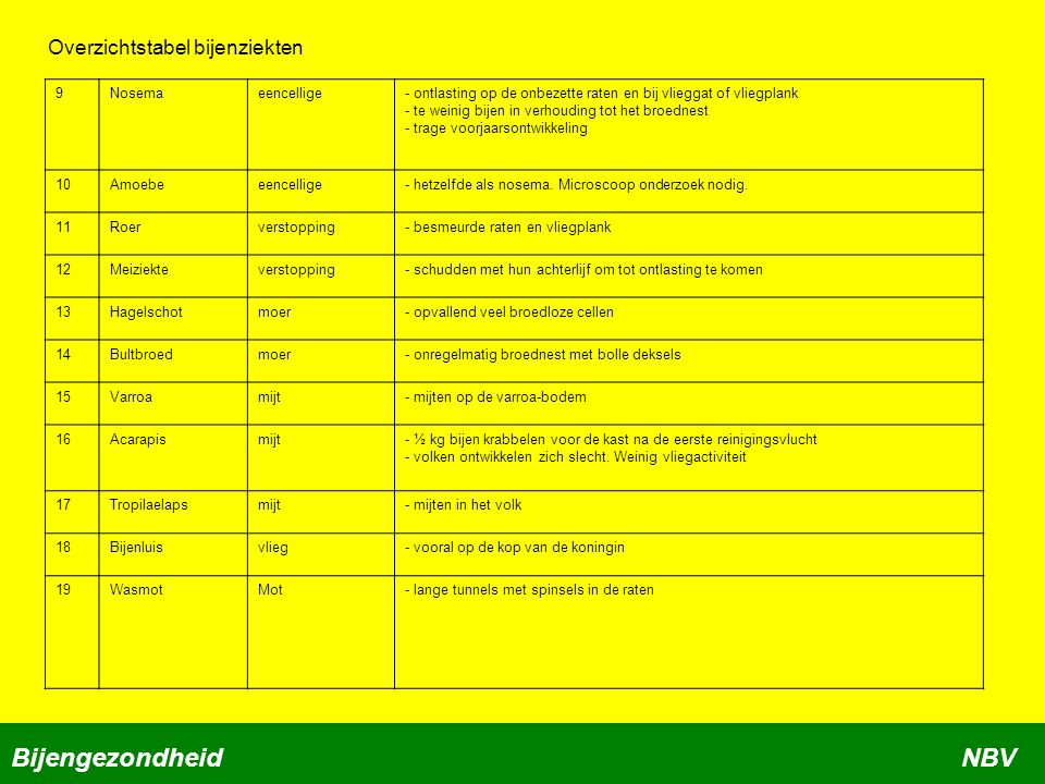 Bijengezondheid NBV Overzichtstabel bijenziekten 9 Nosema eencellige