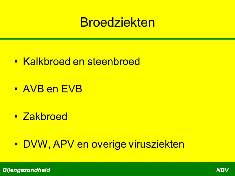 Broedziekten Kalkbroed en steenbroed AVB en EVB Zakbroed