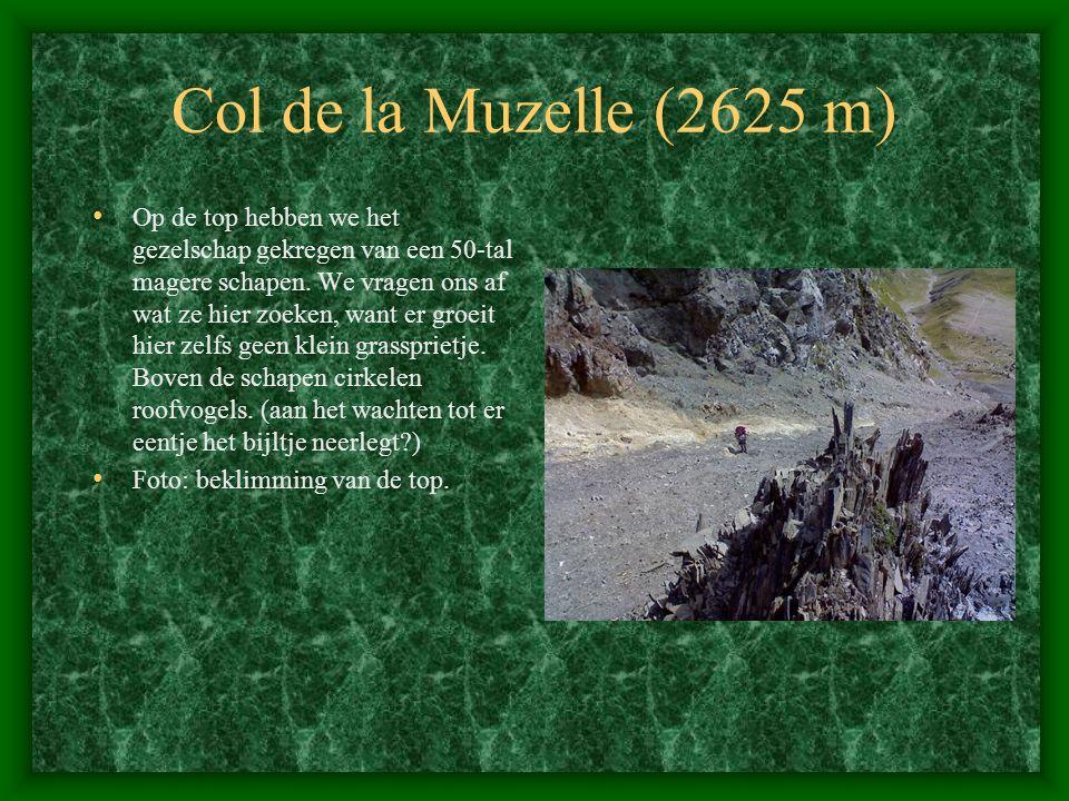 Col de la Muzelle (2625 m)