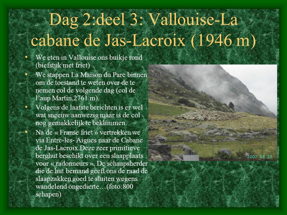 Dag 2:deel 3: Vallouise-La cabane de Jas-Lacroix (1946 m)