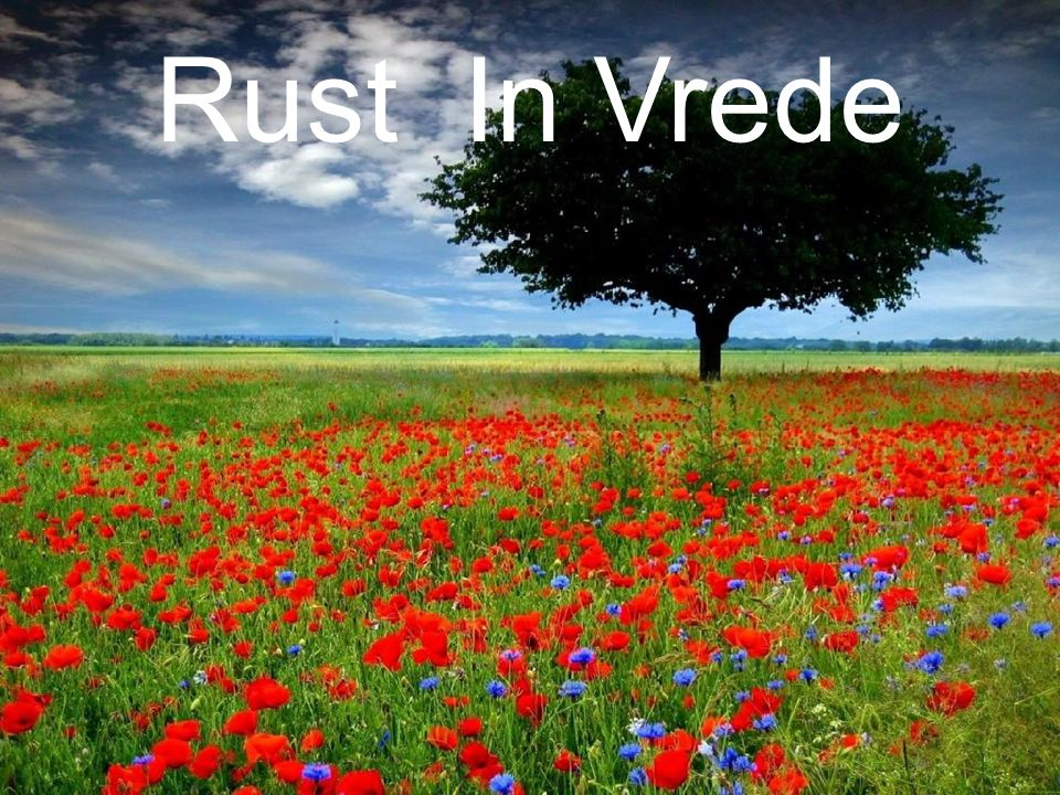 Rust In Vrede 28