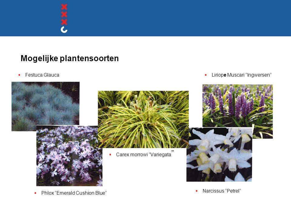 Mogelijke plantensoorten
