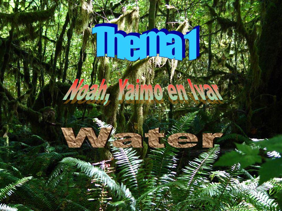Thema 1 Noah, Yaimo en Ivar Water