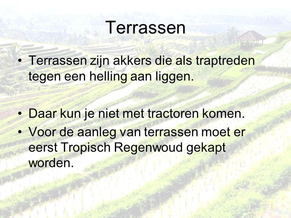 Terrassen Terrassen zijn akkers die als traptreden tegen een helling aan liggen. Daar kun je niet met tractoren komen.