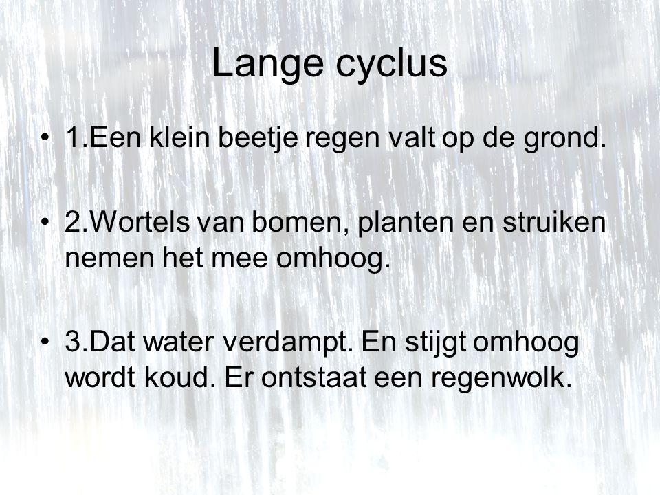 Lange cyclus 1.Een klein beetje regen valt op de grond.