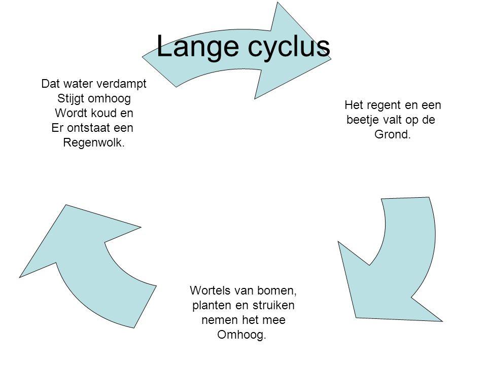 Lange cyclus