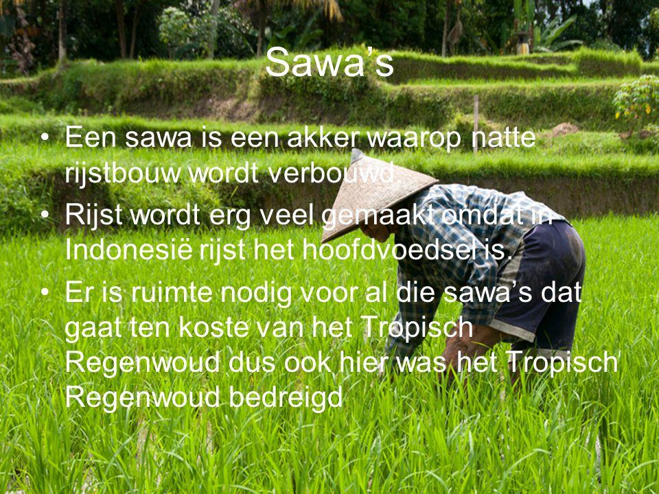 Sawa's Een sawa is een akker waarop natte rijstbouw wordt verbouwd.
