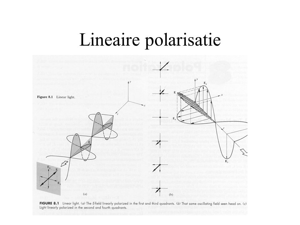 Lineaire polarisatie