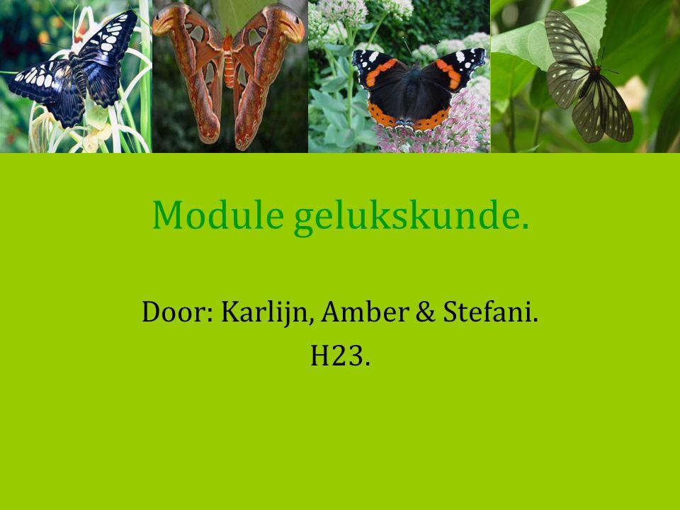 Door: Karlijn, Amber & Stefani. H23.
