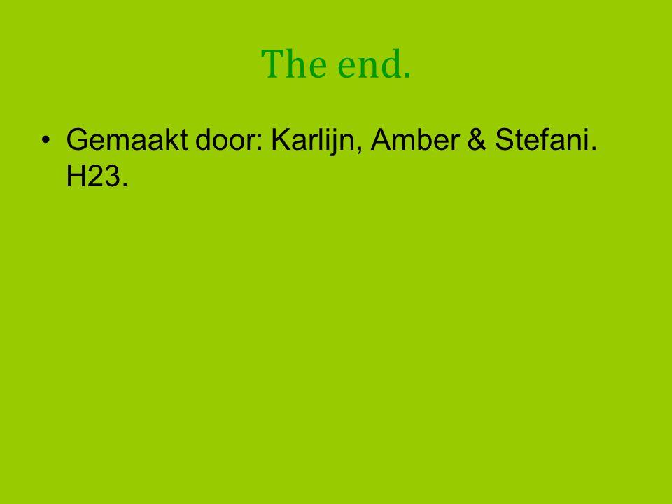 The end. Gemaakt door: Karlijn, Amber & Stefani. H23.