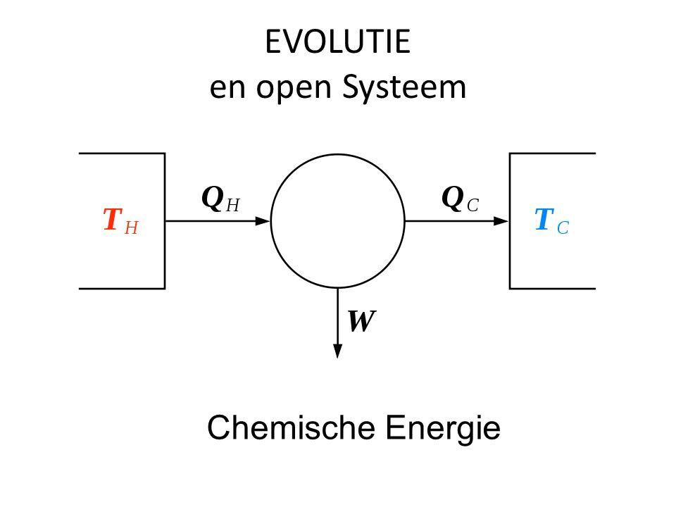 EVOLUTIE en open Systeem