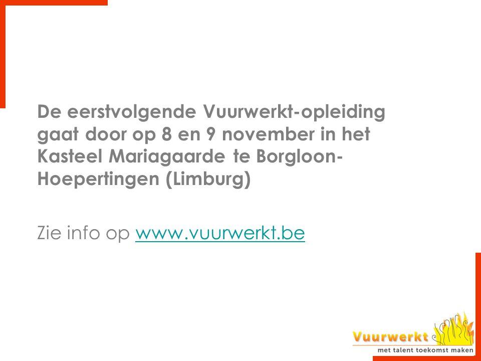 De eerstvolgende Vuurwerkt-opleiding gaat door op 8 en 9 november in het Kasteel Mariagaarde te Borgloon-Hoepertingen (Limburg)