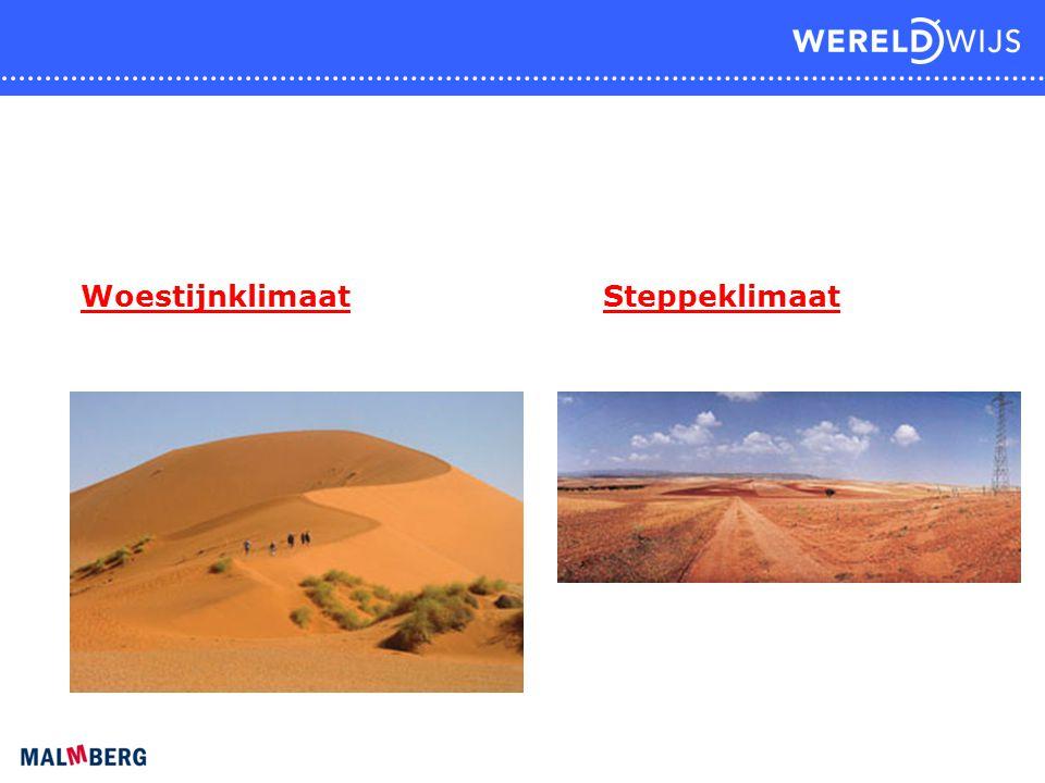 Woestijnklimaat Steppeklimaat