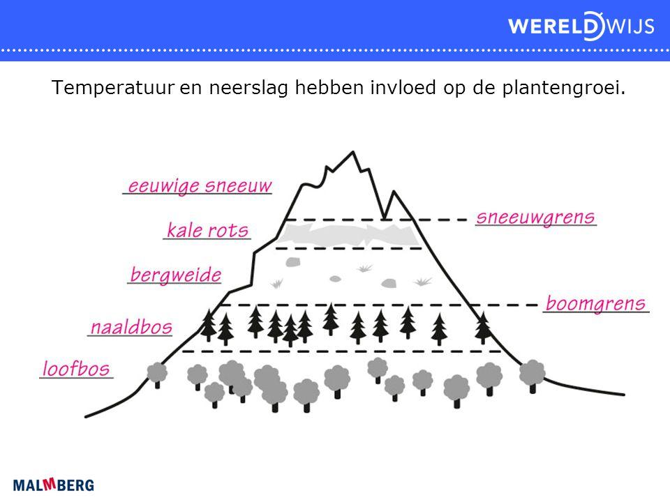 Temperatuur en neerslag hebben invloed op de plantengroei.