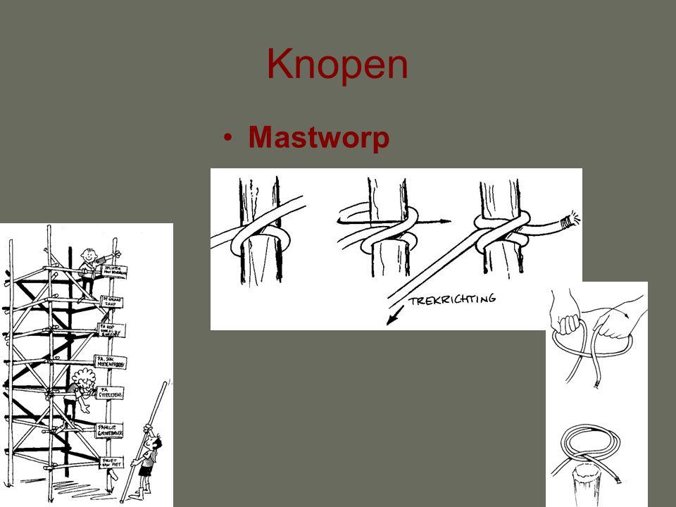 Knopen Mastworp