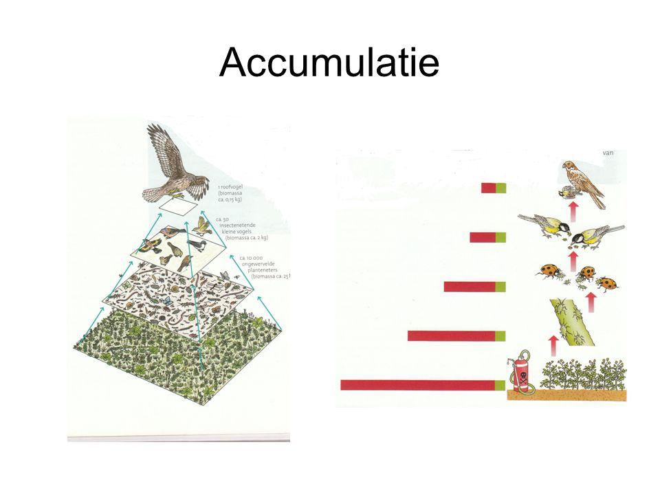 Accumulatie