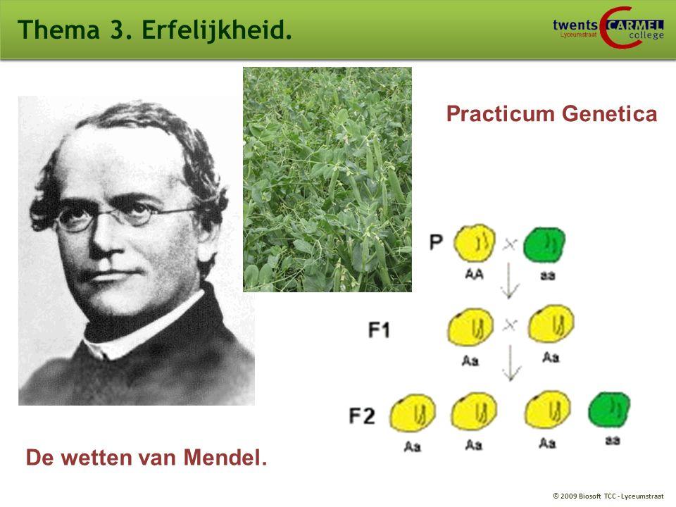 Thema 3. Erfelijkheid. Practicum Genetica De wetten van Mendel.