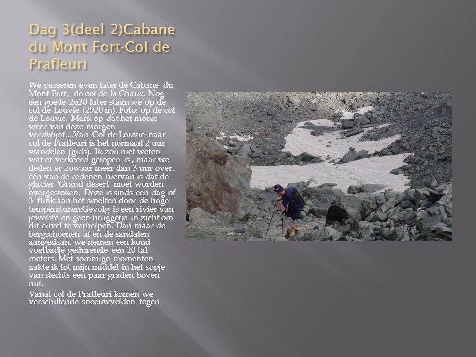 Dag 3(deel 2)Cabane du Mont Fort-Col de Prafleuri
