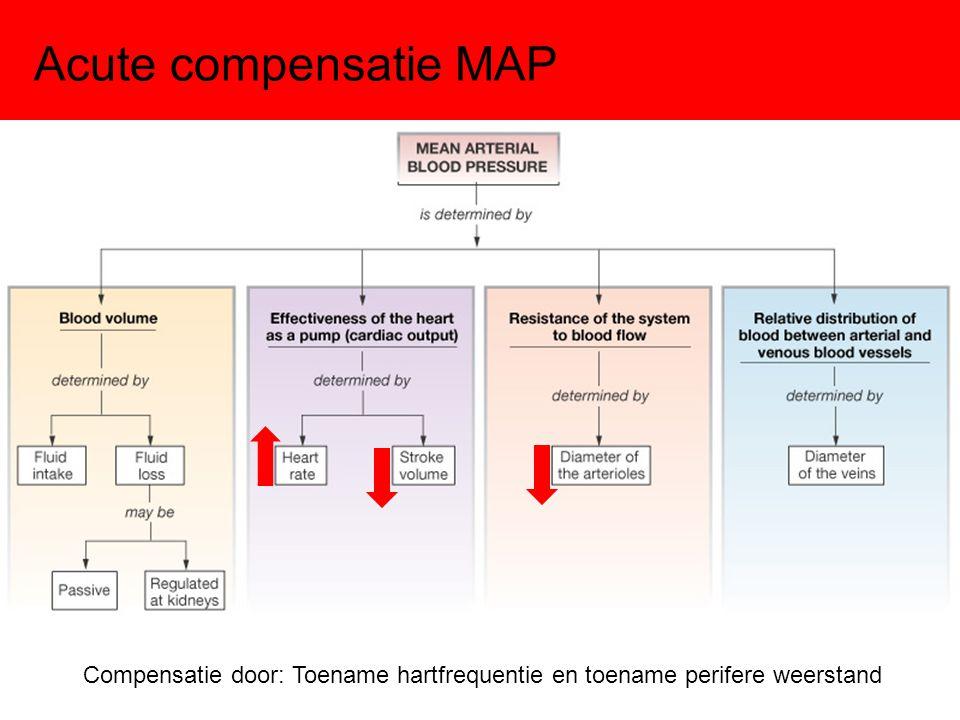Acute compensatie MAP Compensatie door: Toename hartfrequentie en toename perifere weerstand
