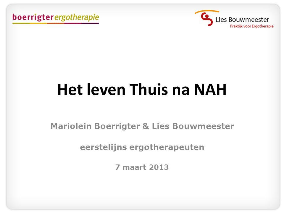 Mariolein Boerrigter & Lies Bouwmeester eerstelijns ergotherapeuten
