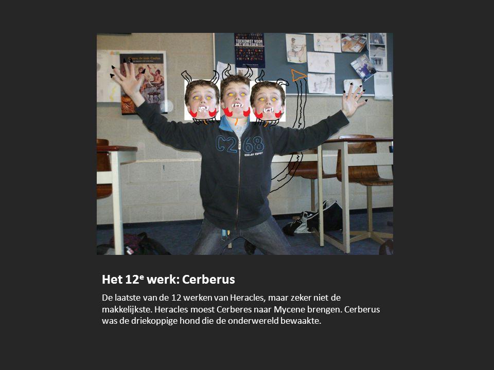 Het 12e werk: Cerberus