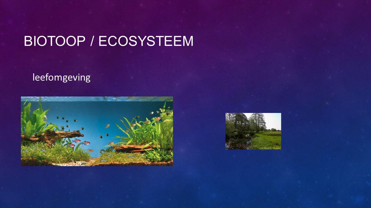 Biotoop / ecosysteem leefomgeving
