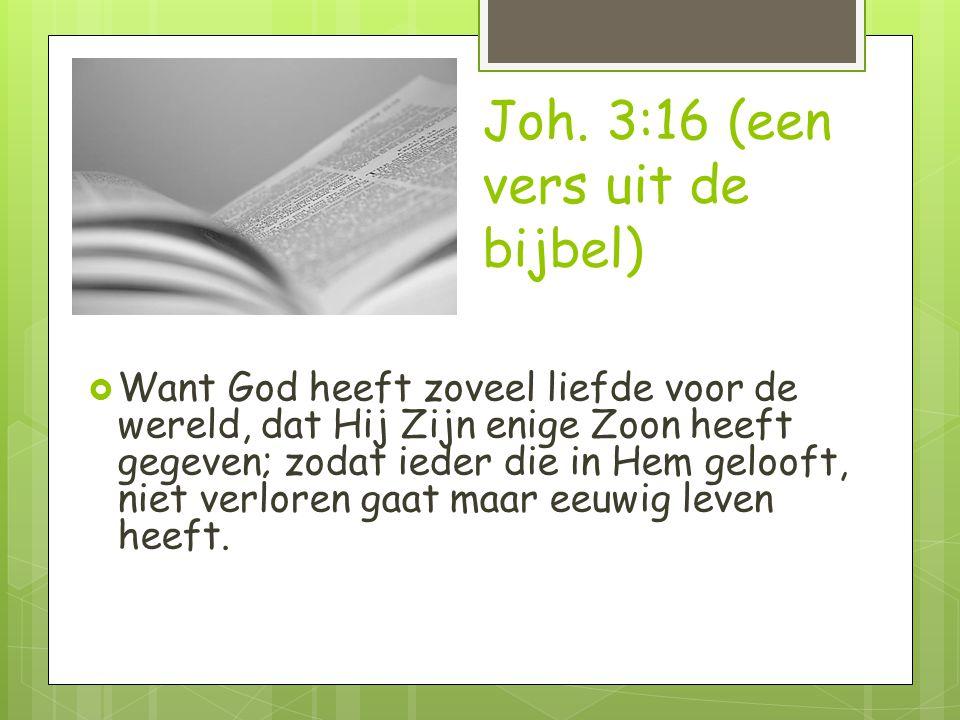 Joh. 3:16 (een vers uit de bijbel)