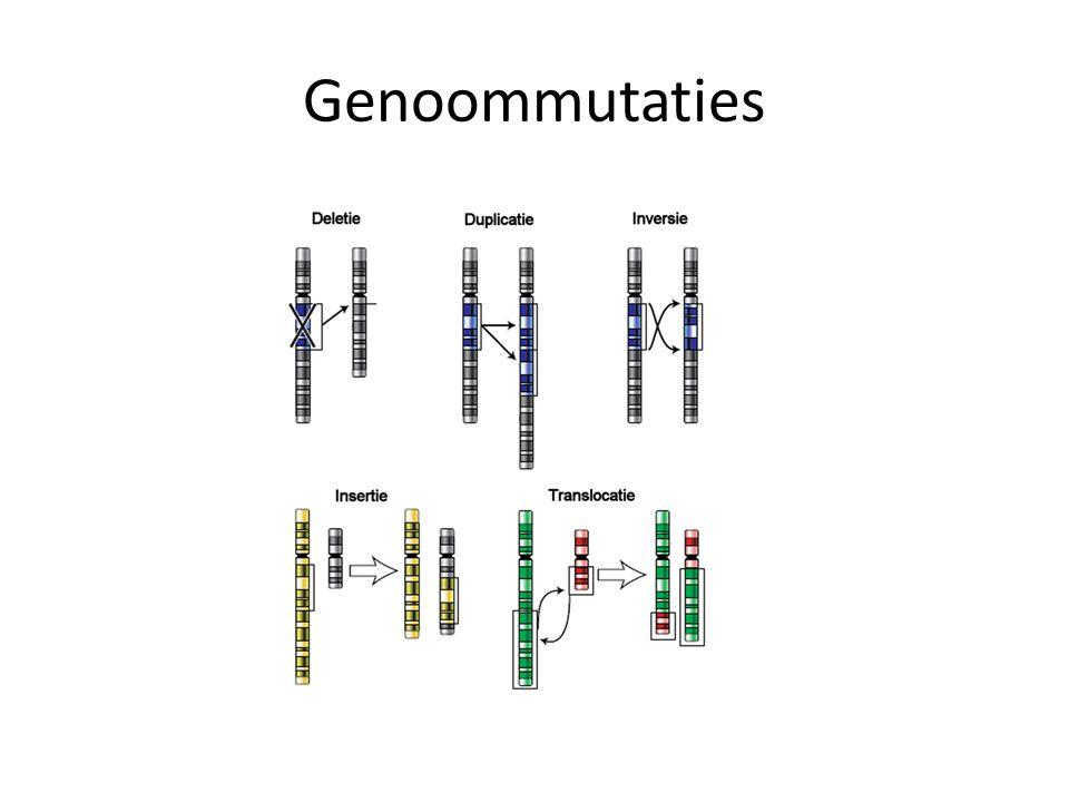 Genoommutaties