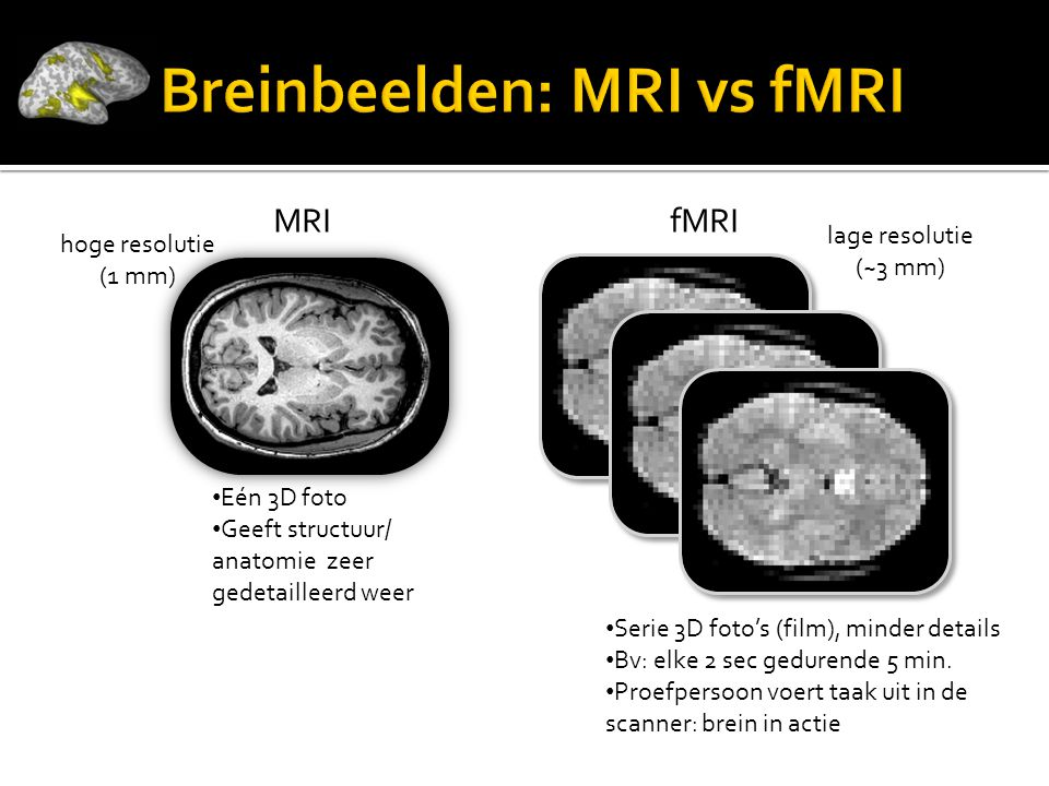 Breinbeelden: MRI vs fMRI