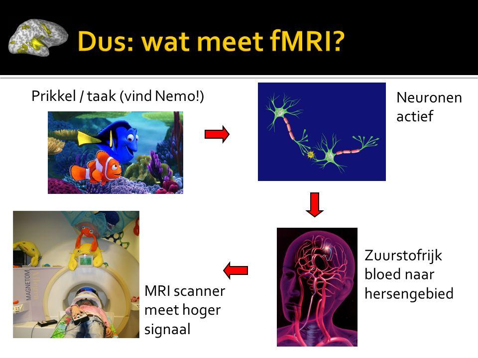 Dus: wat meet fMRI Neuronen actief