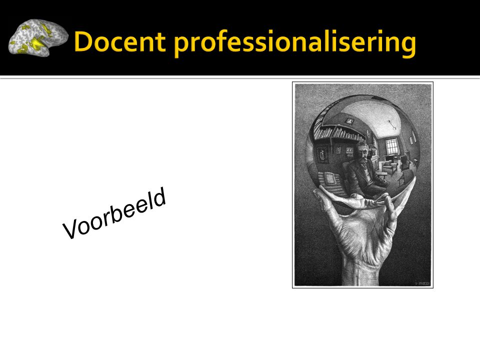 Docent professionalisering