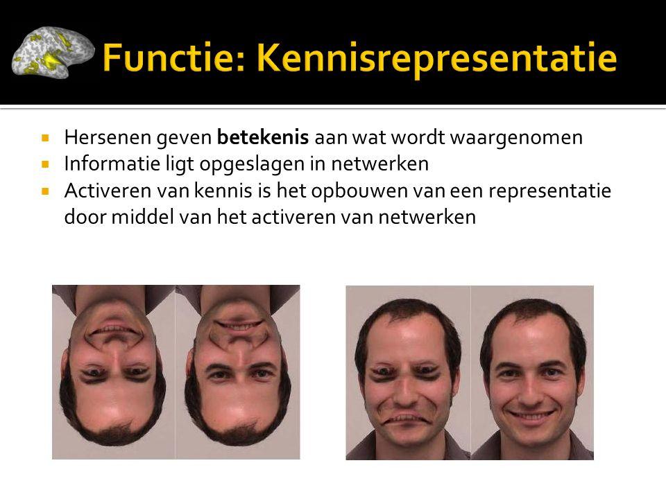 Functie: Kennisrepresentatie