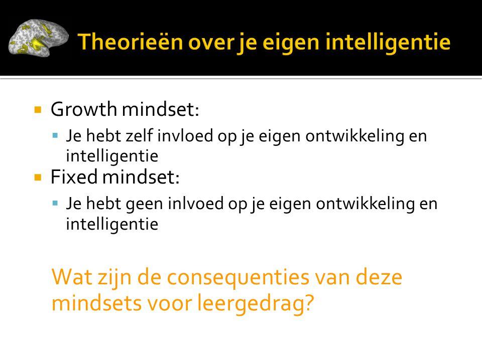 Theorieën over je eigen intelligentie