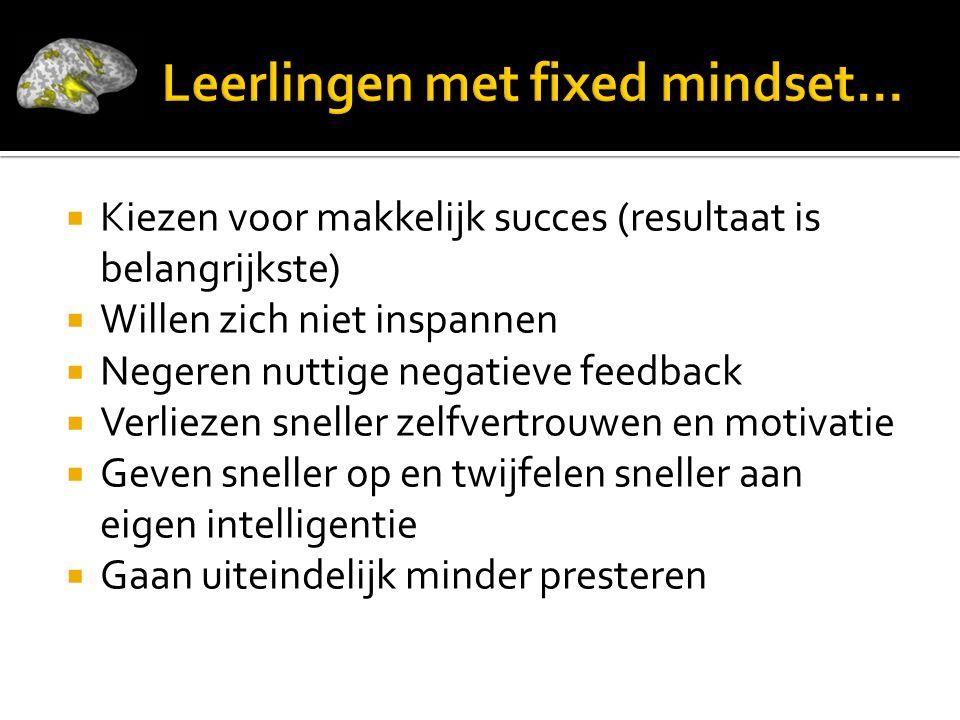 Leerlingen met fixed mindset…