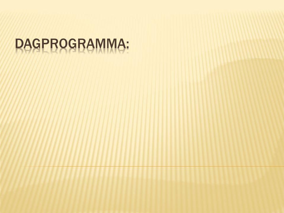 Dagprogramma:
