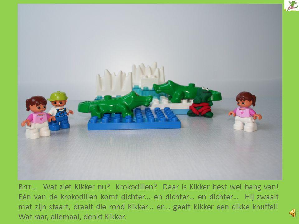 Brrr… Wat ziet Kikker nu. Krokodillen. Daar is Kikker best wel bang van.