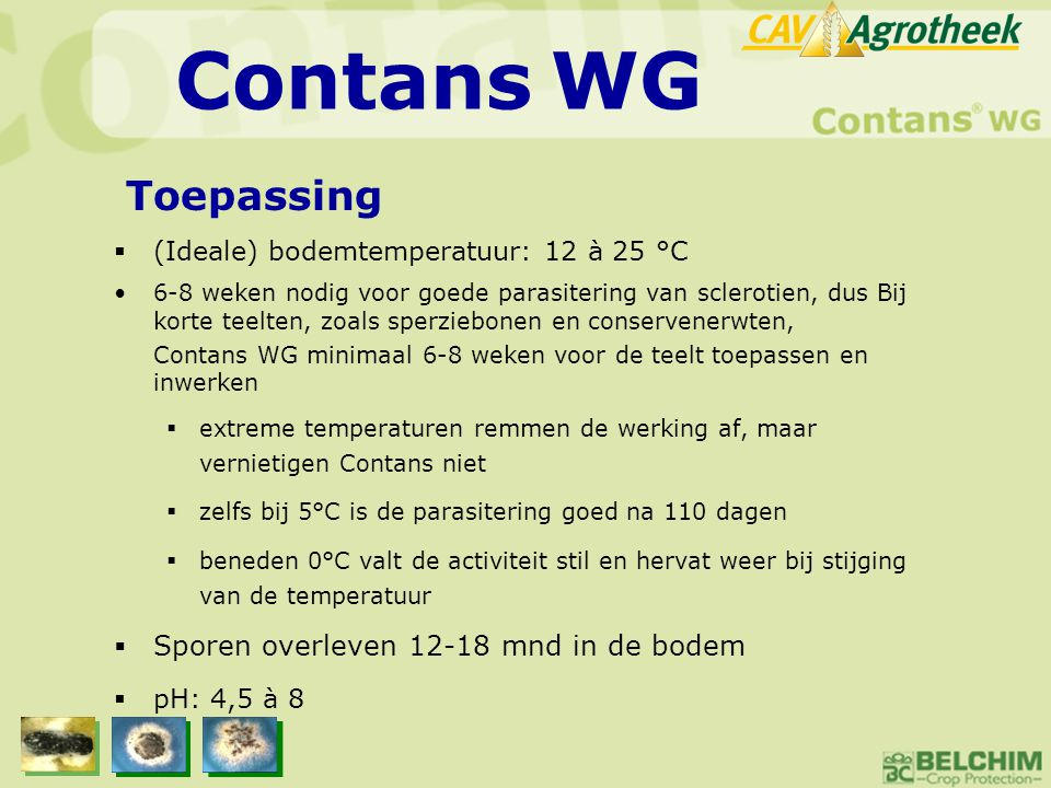 Contans WG Toepassing Sporen overleven 12-18 mnd in de bodem