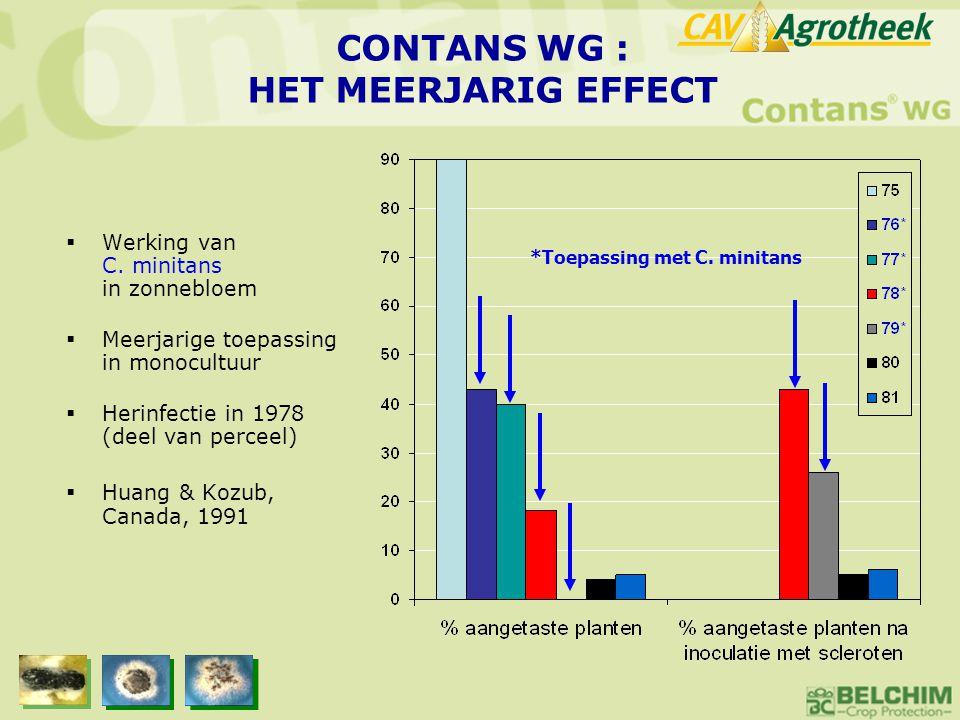 CONTANS WG : HET MEERJARIG EFFECT