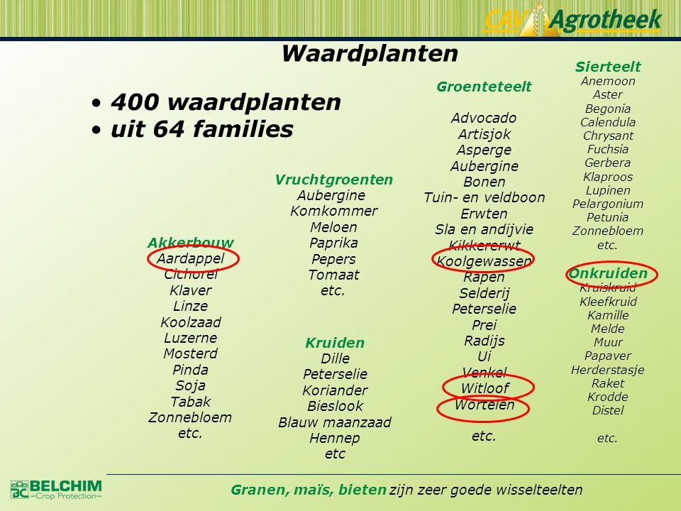 Waardplanten 400 waardplanten uit 64 families Sierteelt Groenteteelt