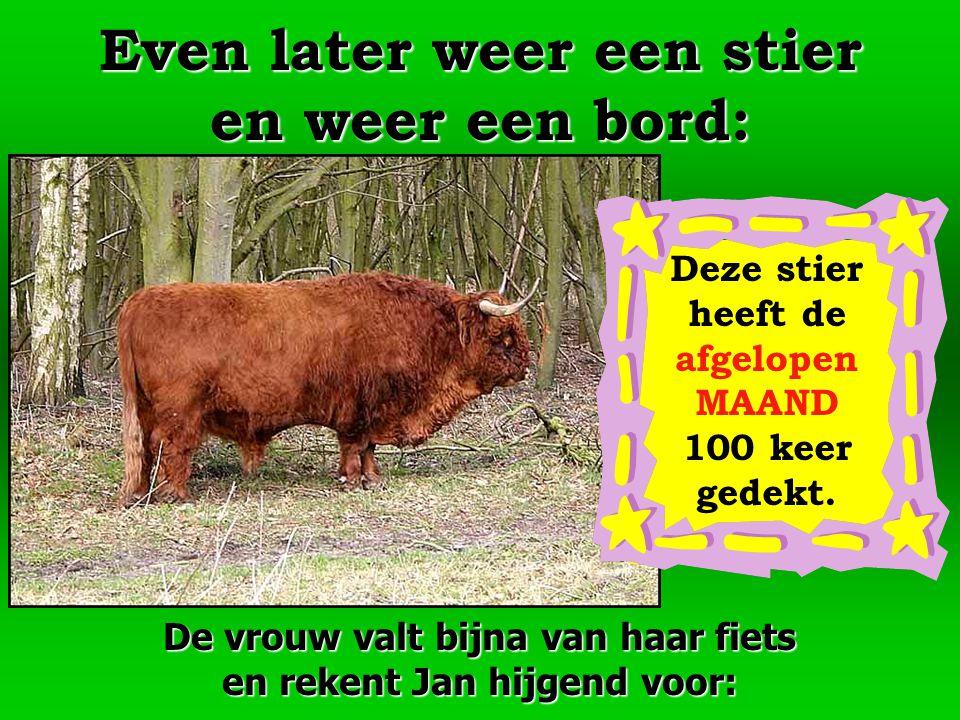 Even later weer een stier en weer een bord:
