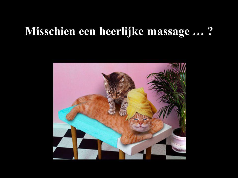 Misschien een heerlijke massage …