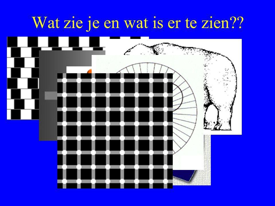 Wat zie je en wat is er te zien