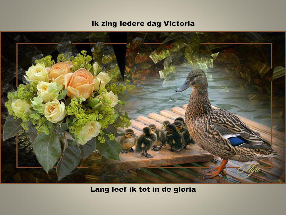 Ik zing iedere dag Victoria