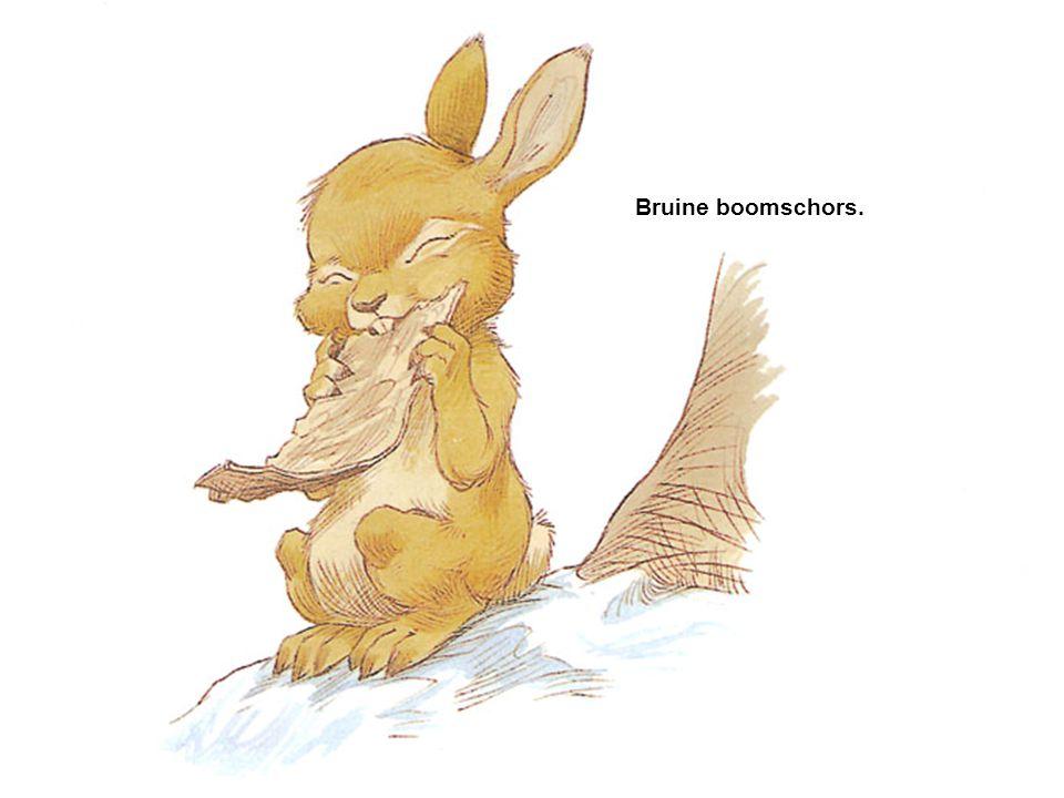 Bruine boomschors.