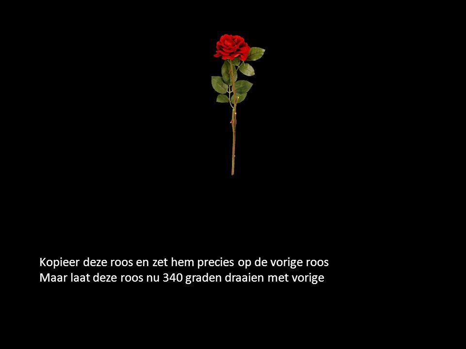 Kopieer deze roos en zet hem precies op de vorige roos