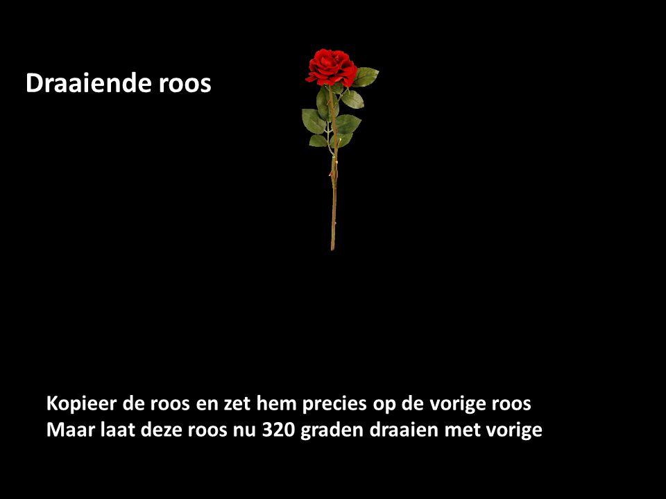 Draaiende roos Kopieer de roos en zet hem precies op de vorige roos