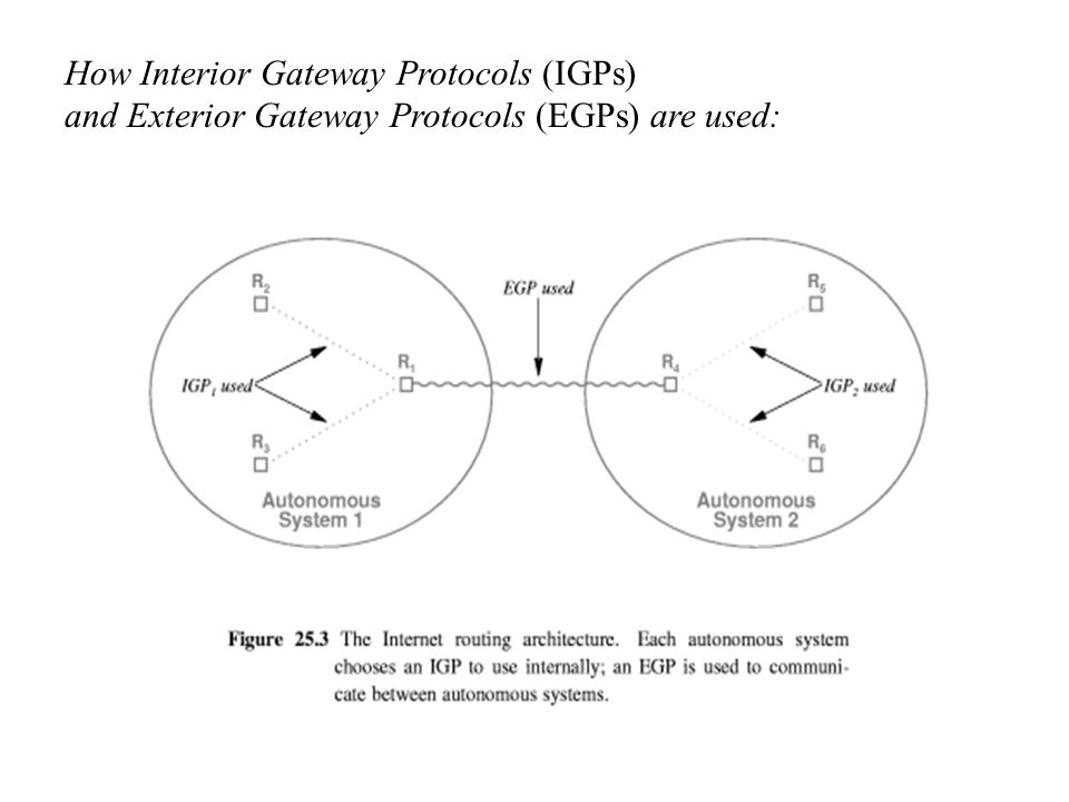 How Interior Gateway Protocols (IGPs)
