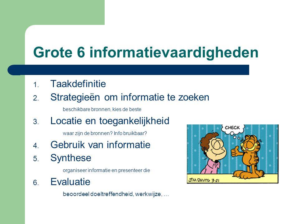 Grote 6 informatievaardigheden